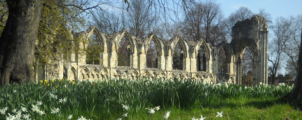 Spring flowers and St Mary's Abbey ruins in the York Museum Gardens