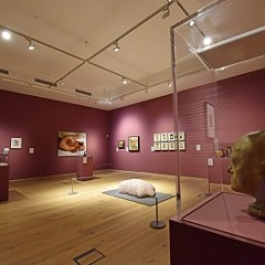 Flesh at York Art Gallery. Photo by Anthony Chappel-Ross.