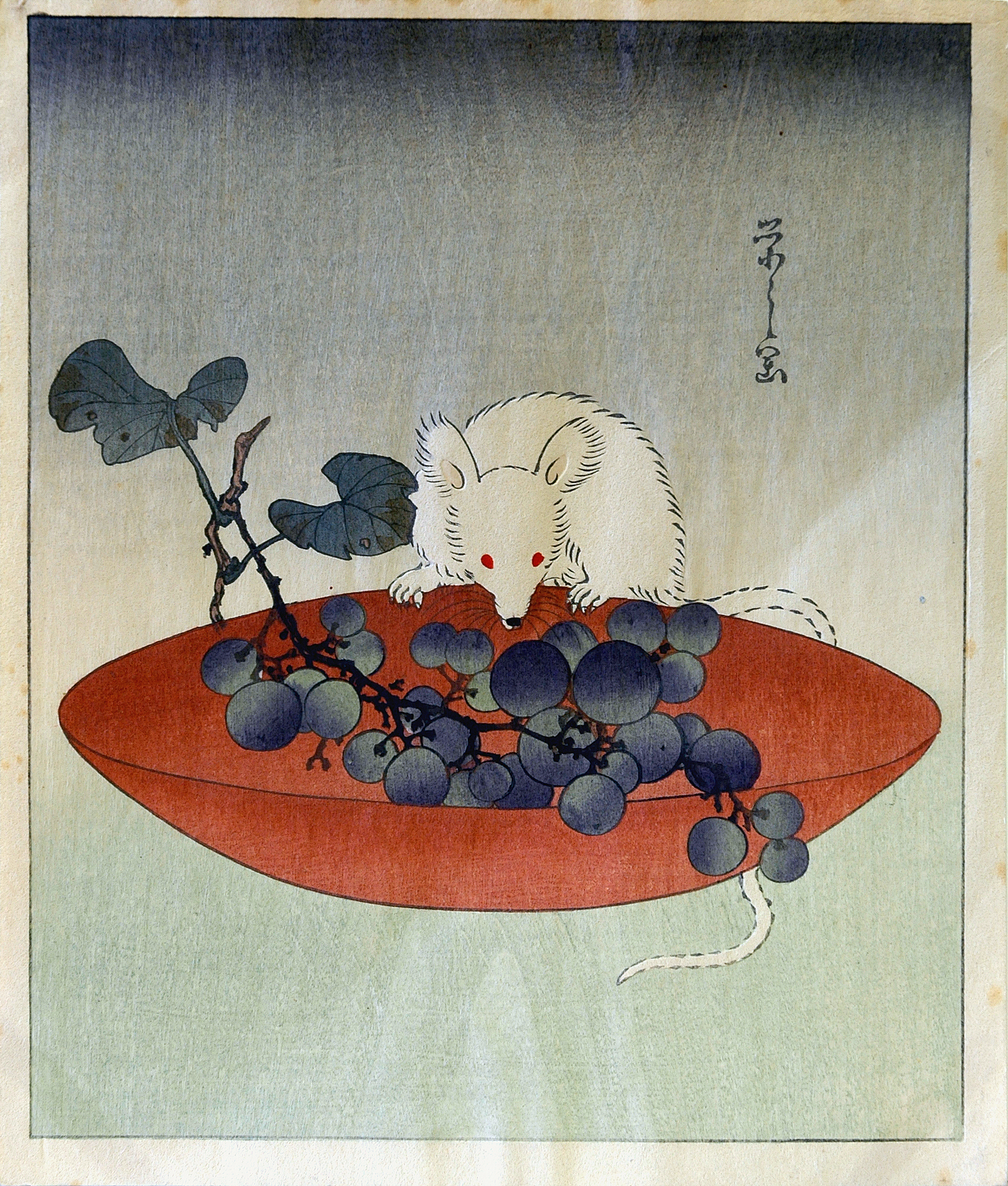 Mouse eating berries