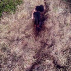 A woman runs through long grass
